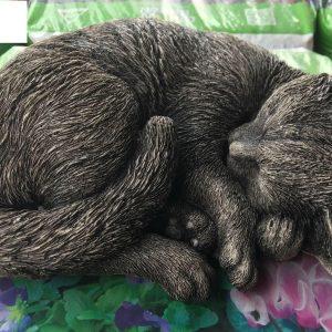 Sleeping Cat Concrete Memorial Statue